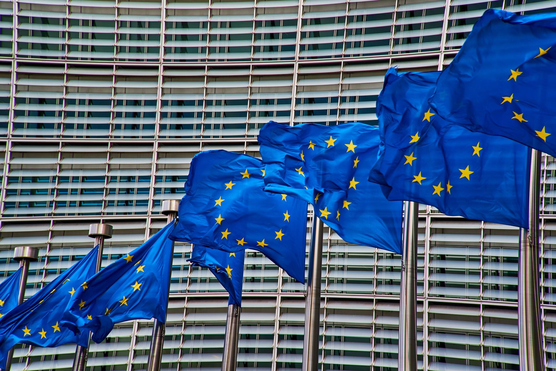 нет евросоюзу картинки темно-зеленые листья глубокими